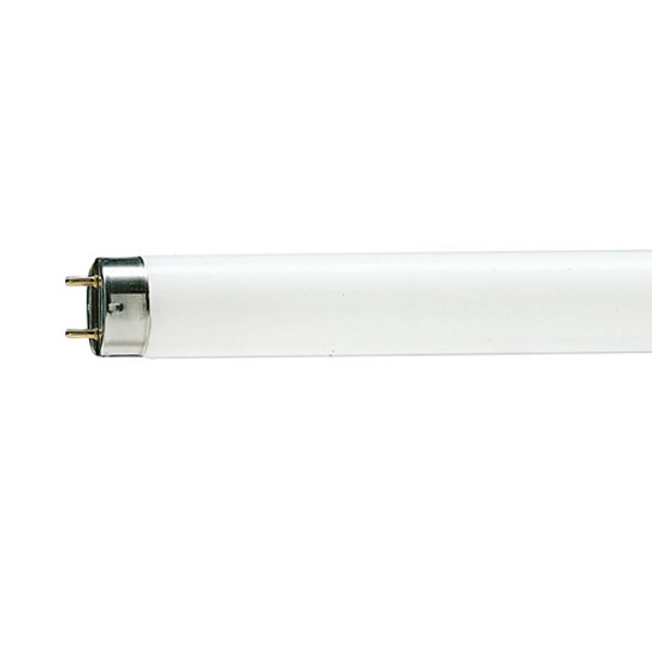 Buy Philips 36w 4ft Domestic Tubelight At Best Price In India